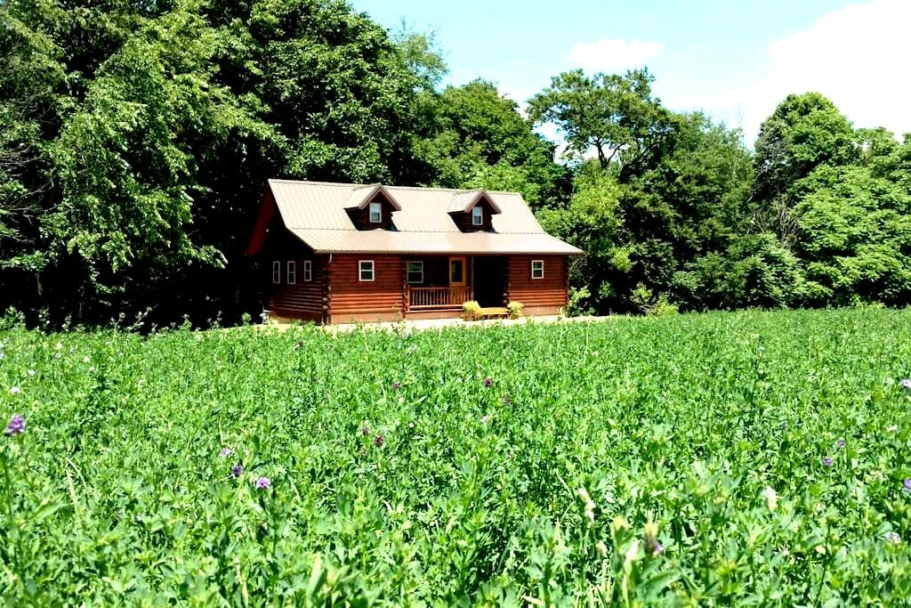 AZ Longhorns Cabin - Sterling - Houten huisje
