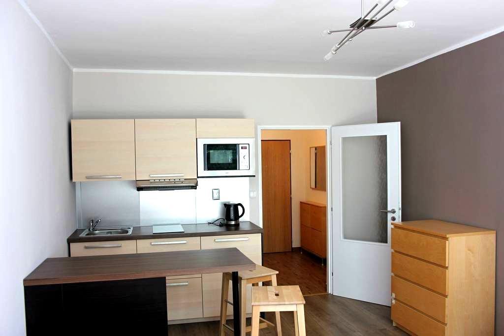 Apartmánový byt Luhačovice - Luhačovice - Apartment