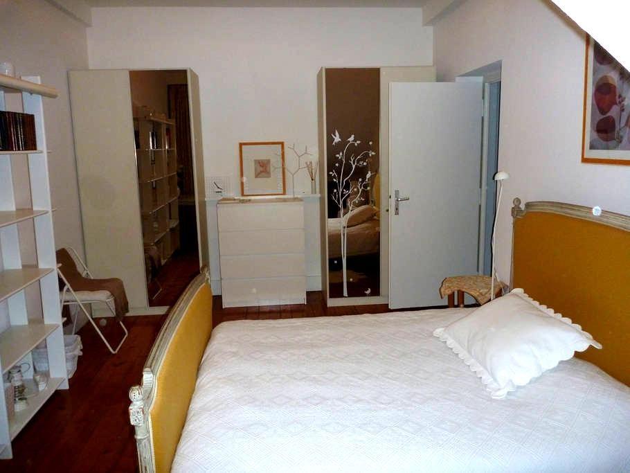 charming flat idally located center - Geneva - Apartment