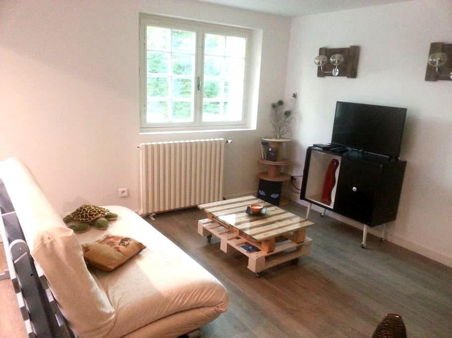 Studio 50m² indépendant ds la campagne toulousaine - Baziège - Appartement