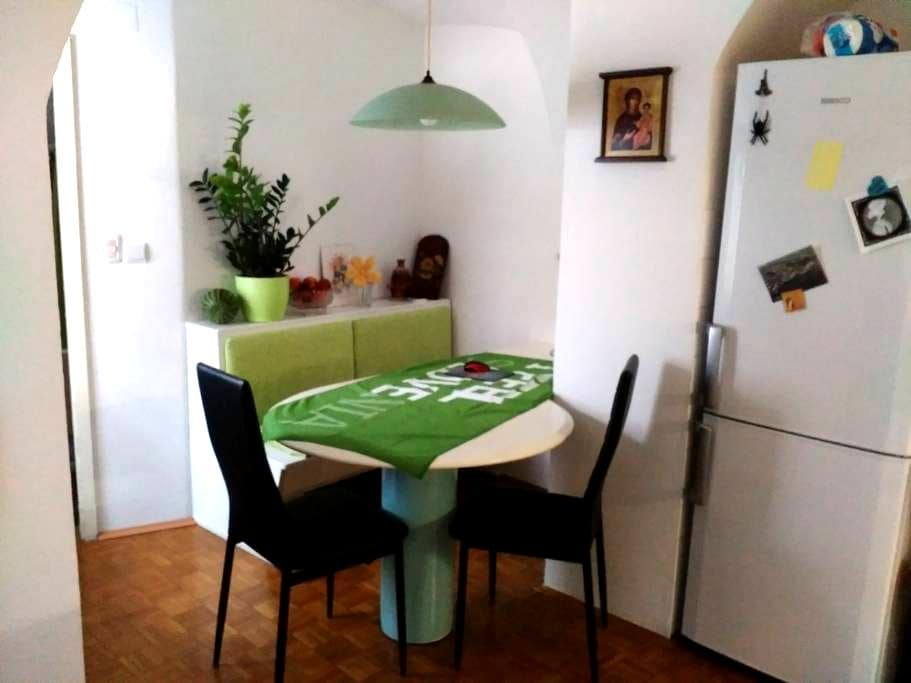 In the city center, museums, events... - Kranj - Apartment