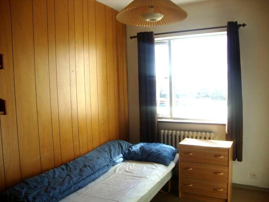 Nice single bedroom to lease.  - Reykjavik - Appartement