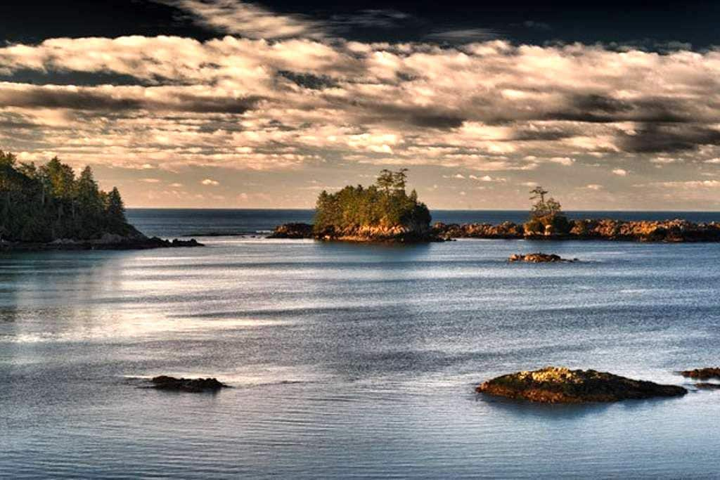 Ocean View Room- The Eagles Nest - 유클루릿(Ucluelet)