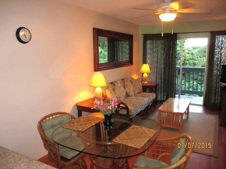 Cozy and vibrant, minutes to beaches and to Hilo. - Hilo - Apartment