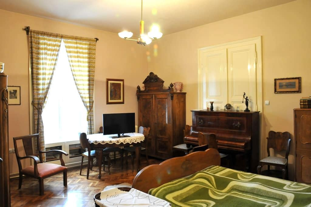 Apartment room - Subotica