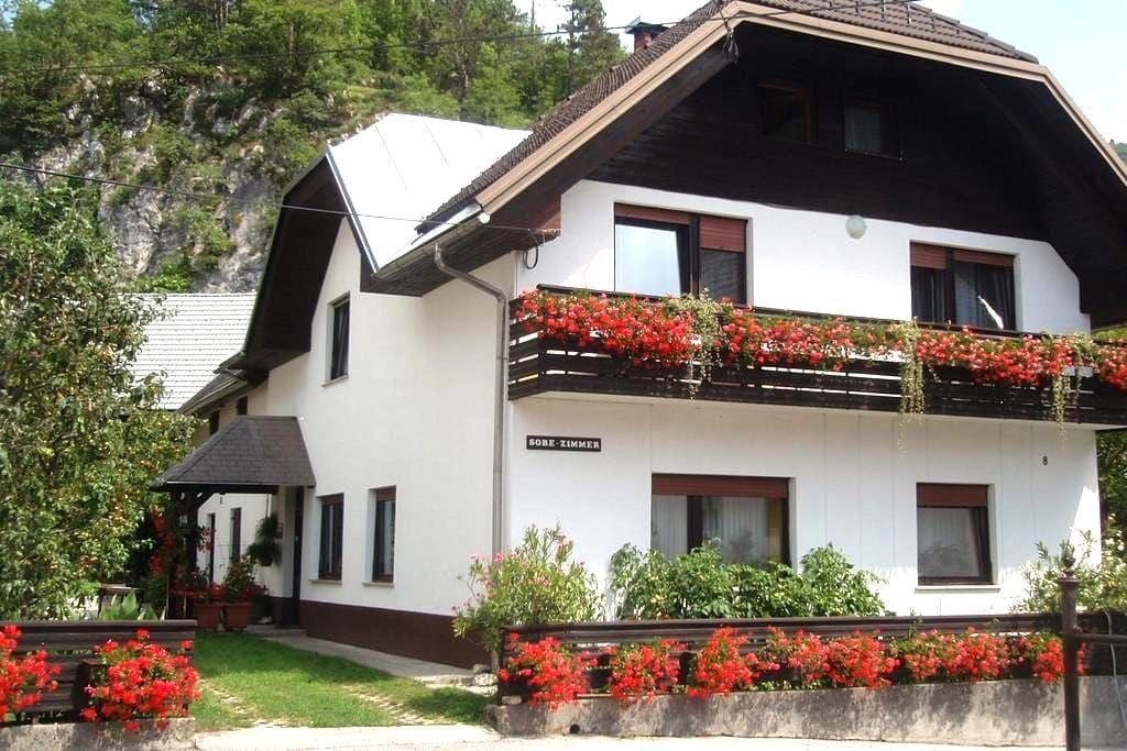Apartment Gregorc - near Bled - Bohinjska Bela