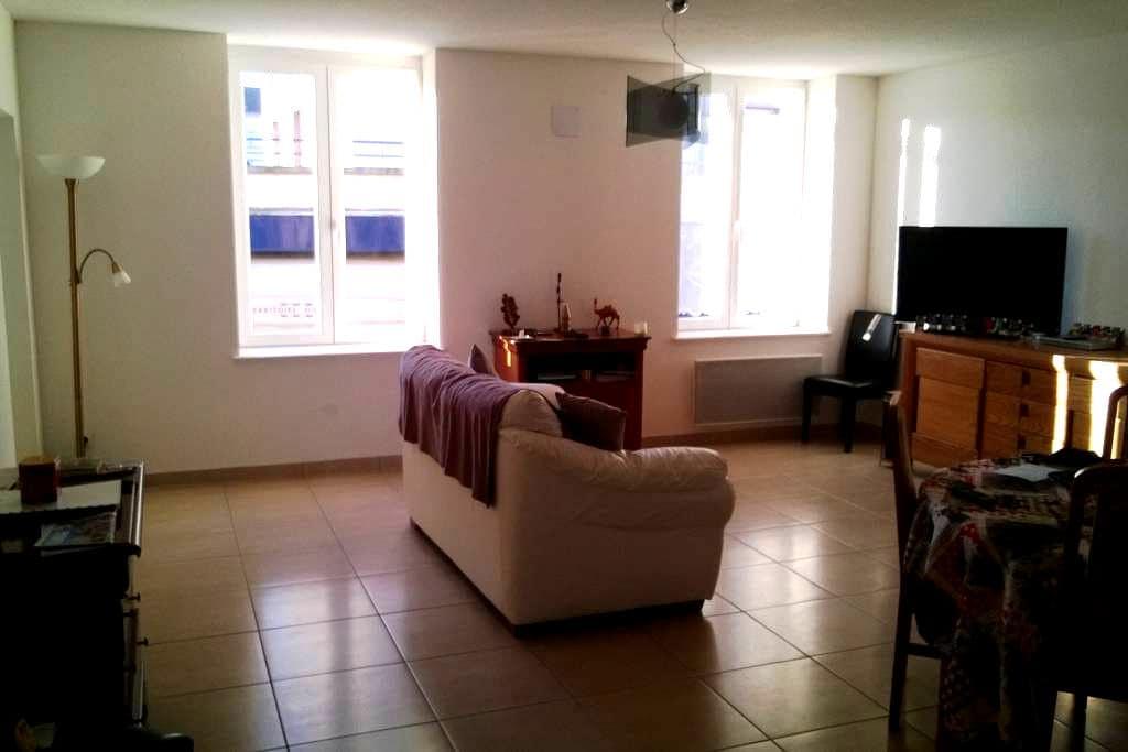 Appartement plein centre ville - Épinal - Apartment