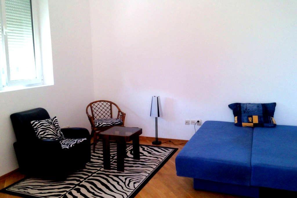 Studio in Vrnjacka banja - Vrnjačka Banja - Apartamento