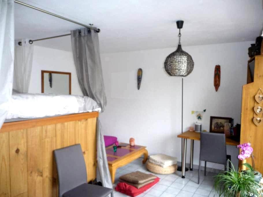 Studio Panorama - Viuz-en-Sallaz - Appartement