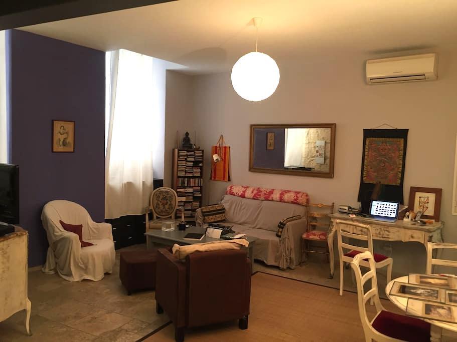 Maison Pasteur - Arles - Apartamento