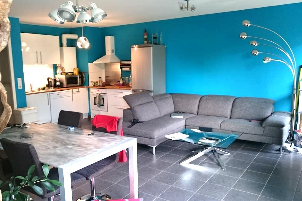 CHAMBRE DANS BEAU F3 ,70 m2 (IDEAL POUR ETUDIANT) - Vandœuvre-lès-Nancy - Lägenhet