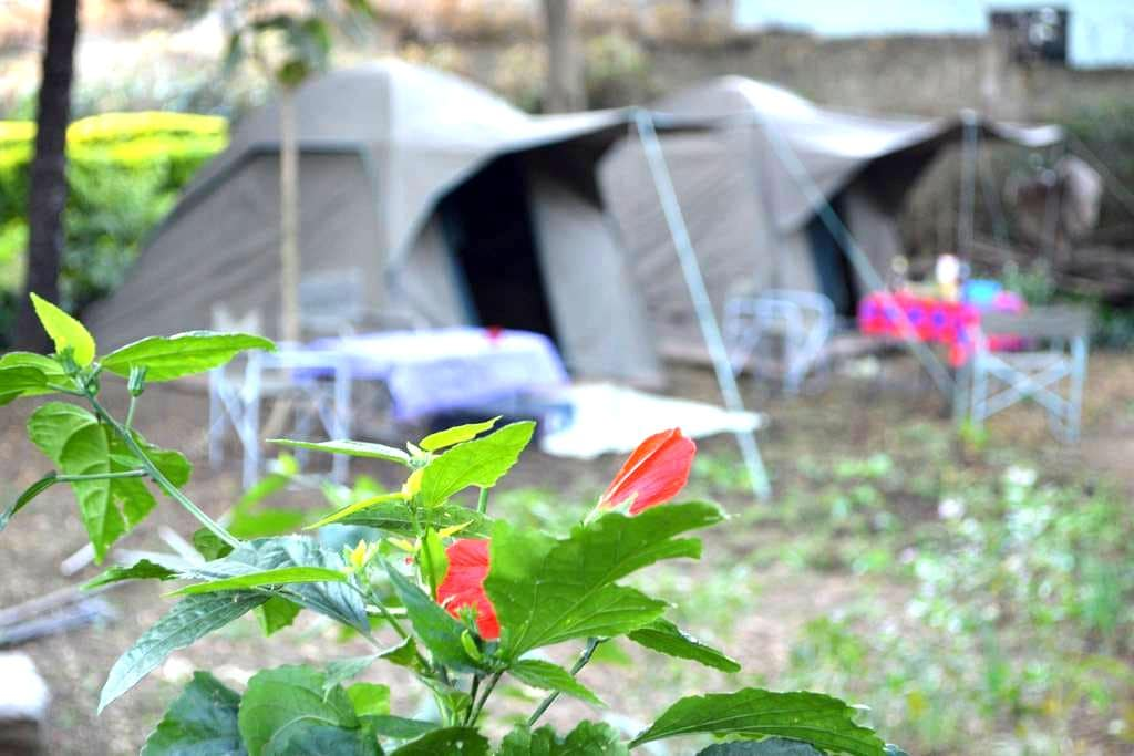Tent in a beautiful and calm garden - Arusha - Çadır