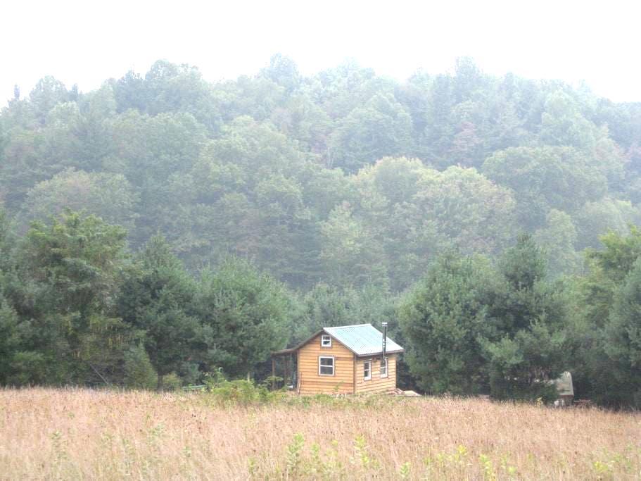 Blue Ridge Parkway ~ sweet cabin - Floyd