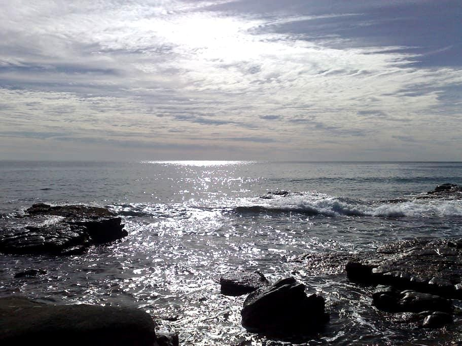 Magnificent Sunshine Coast QLD - Maroochydore