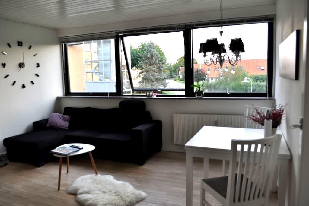 Super cosy apartment in quiet area in Copenhagen - Rødovre - Apartment