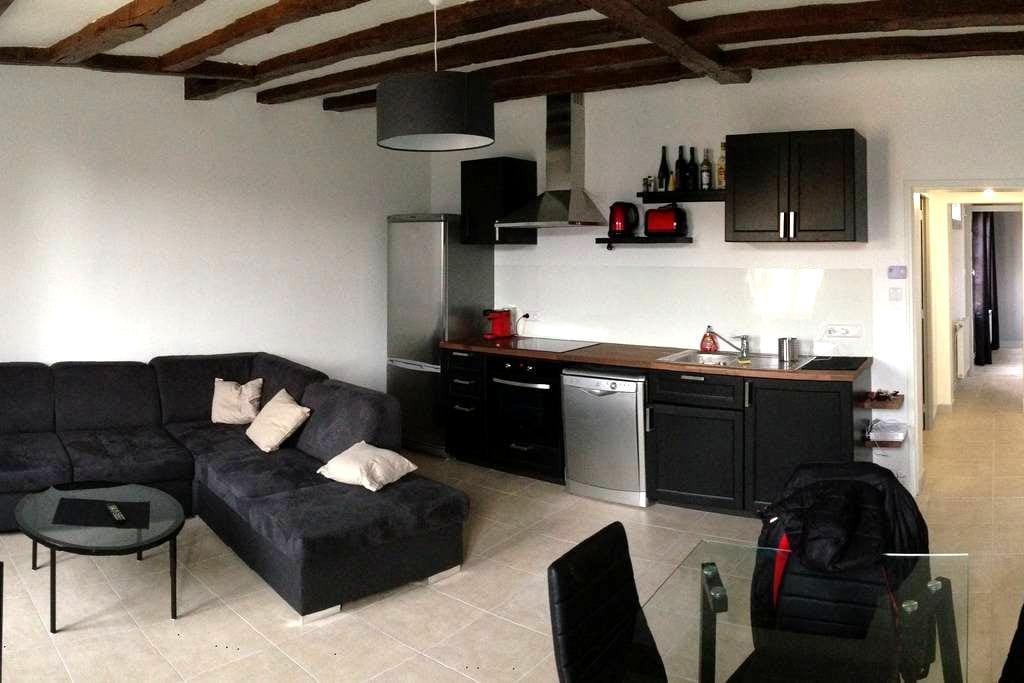 Centre historique Saumur - Apt confort typique - Saumur - Apartment