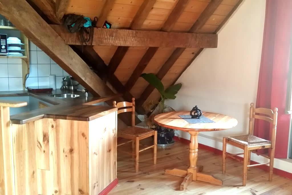 Studio de charme 40m2, tout confort, écologique - Bagnères-de-Bigorre - Appartement