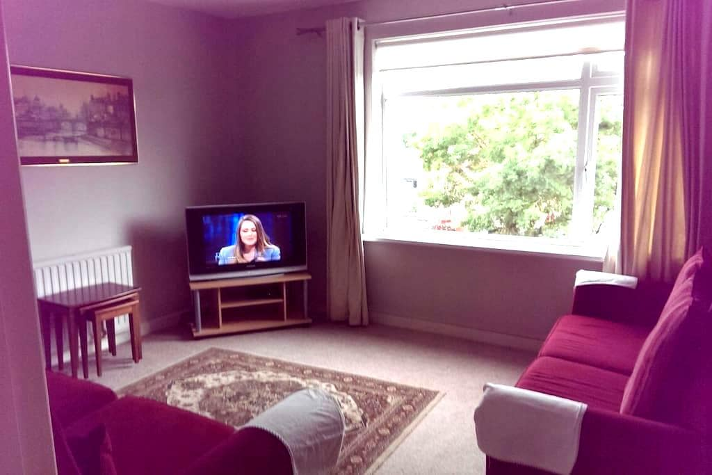 Cozy Comfortable Spacious Two Bedroom Apartment - Rathmines