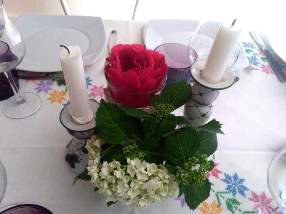 Cene a tema per gli ospiti - caselle torinese - Flat