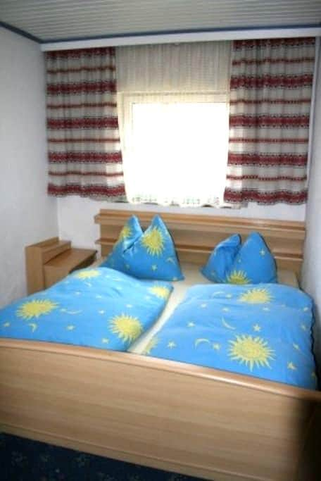 double bed room in apt/ zell am see - Kleinsonnberg - Ortak mülk