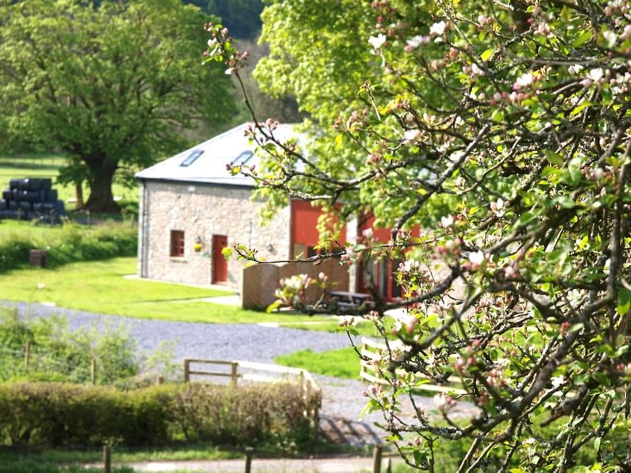 Peregrine Cottage with hot tub - Cynghordy