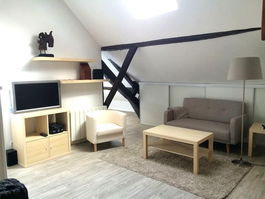 Charmant , centre Fontainebleau - Fontainebleau - Apartment