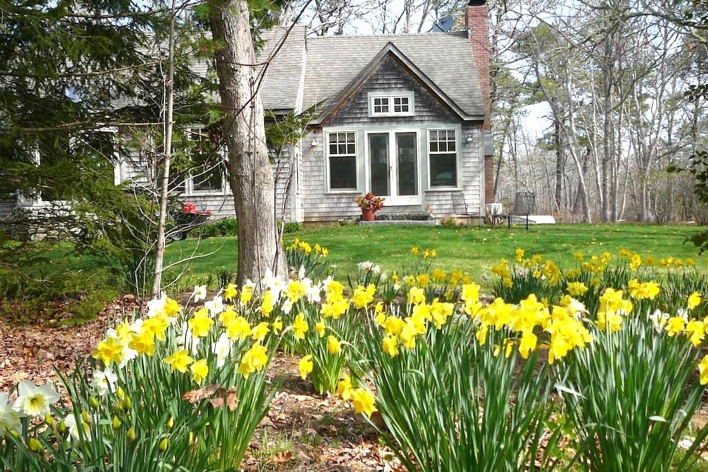 Inviting Island retreat - West Tisbury - Bed & Breakfast