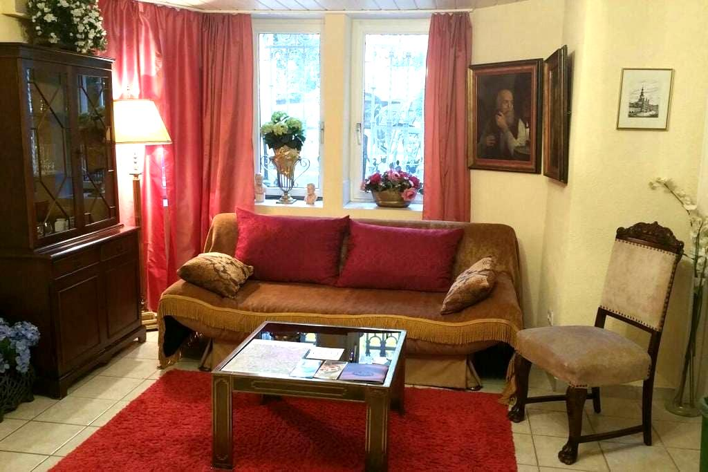 Cosy Villas-Room in prime Location - Wiesbaden - Huvila