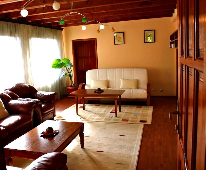 Spacious Apartment in Prishtina - Prishtina - House