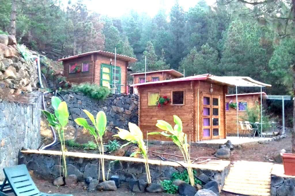 HOSTAL SANSOFE - Cabaña 3 - Tijarafe - Alberg