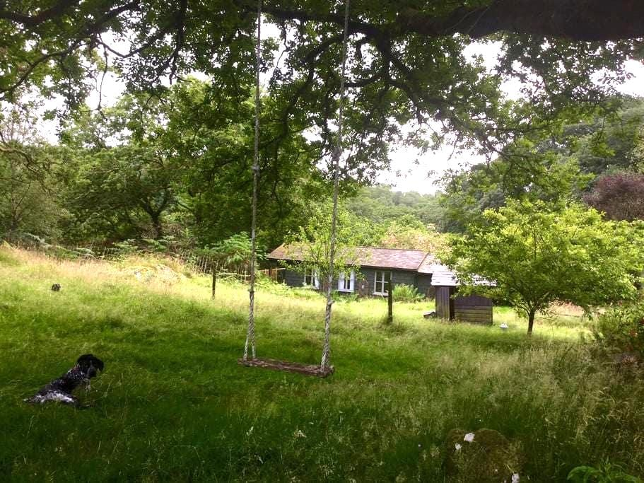 Snowdonia cabin in nature with hot tub - Blaenau Ffestiniog