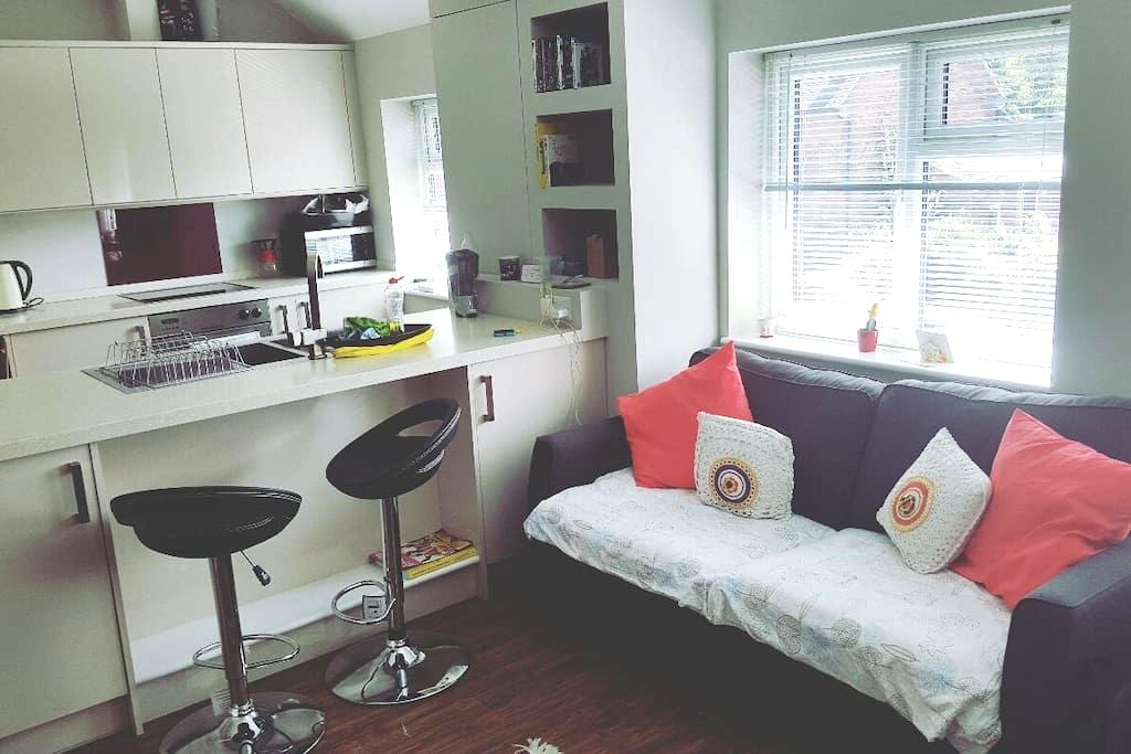Modern 1 bed flat with free parking - Cambridge - Appartement
