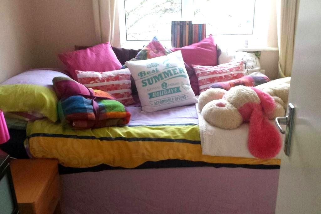 Bright single room - Bray - Casa