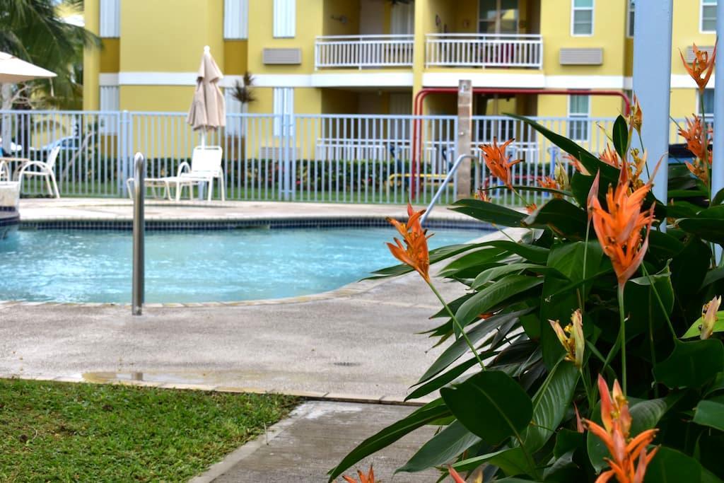 Caribbean life! Beach and forest. - Suárez - Apartamento