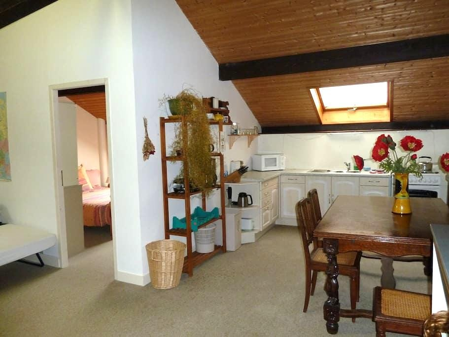 One bedroom apartment in the Savoie - Montailleur - Apartamento