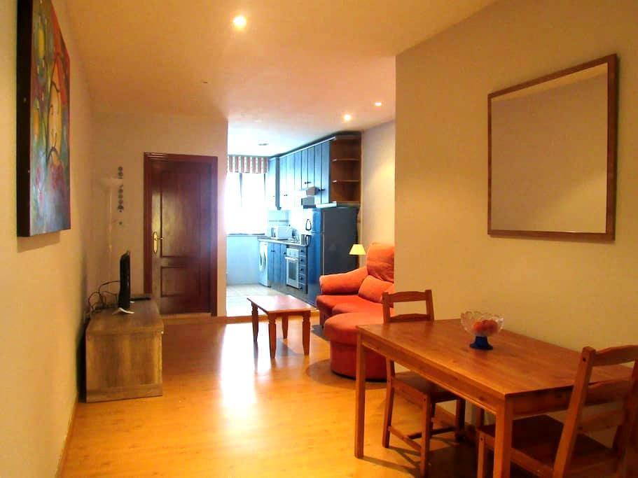Apartamento en el precioso casco antiguo avilesino - Aviles - Lejlighed