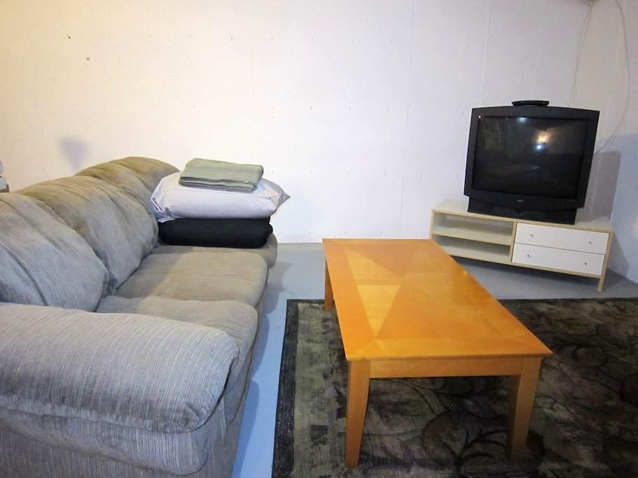 Couch-Sleep In Basement, 2-Minutes To C-Train - Calgary - Hus