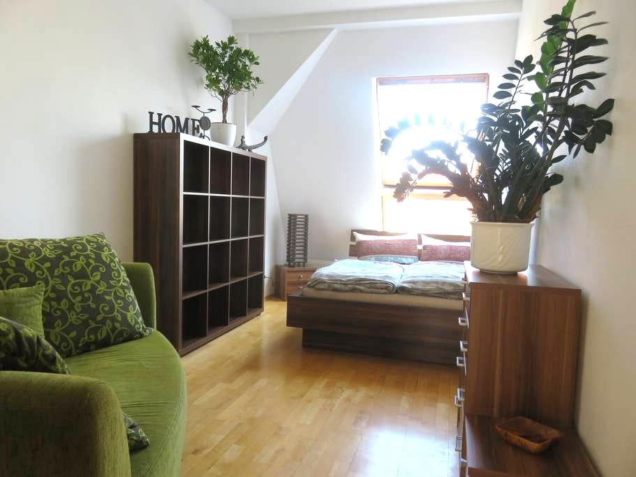 Cozy room in comfortable 180qm flat, 40qm terrace - Berlim - Apartamento