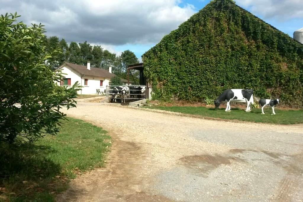 Little house on a dairy farm - Méry-es-bois