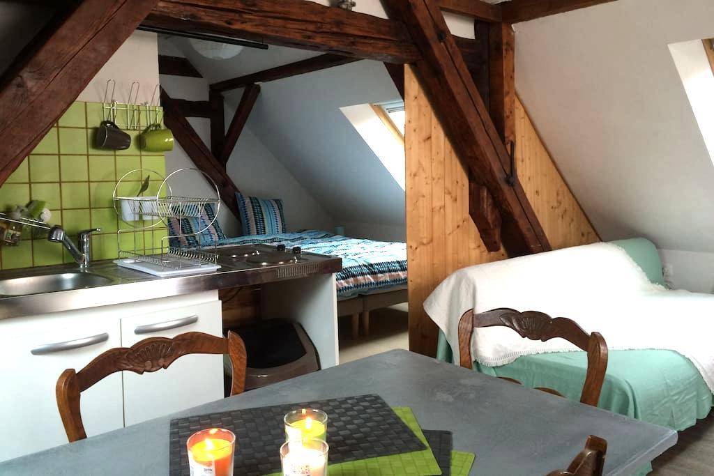 """Studio """"so heimlich"""" proche Strabourg - Oberhoffen-sur-Moder"""
