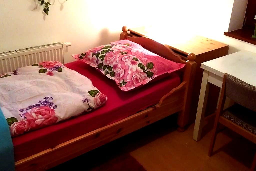 Cozy room for one, wifi, near metro station - Praha - Dům