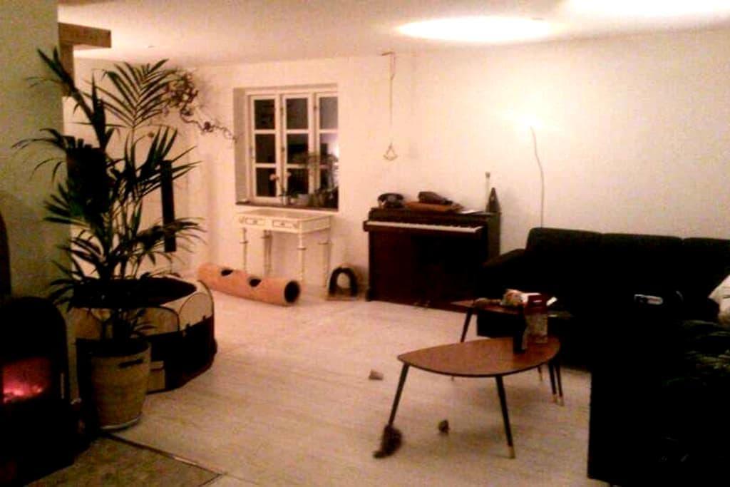 Wonderfull cosy house 50 km from center Copenhagen - Borup - House