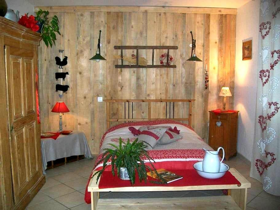 Big and rustic room - Rhinau
