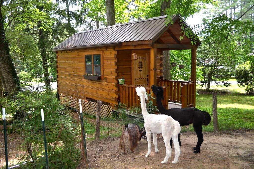 Log Cabin Tiny House - Arden