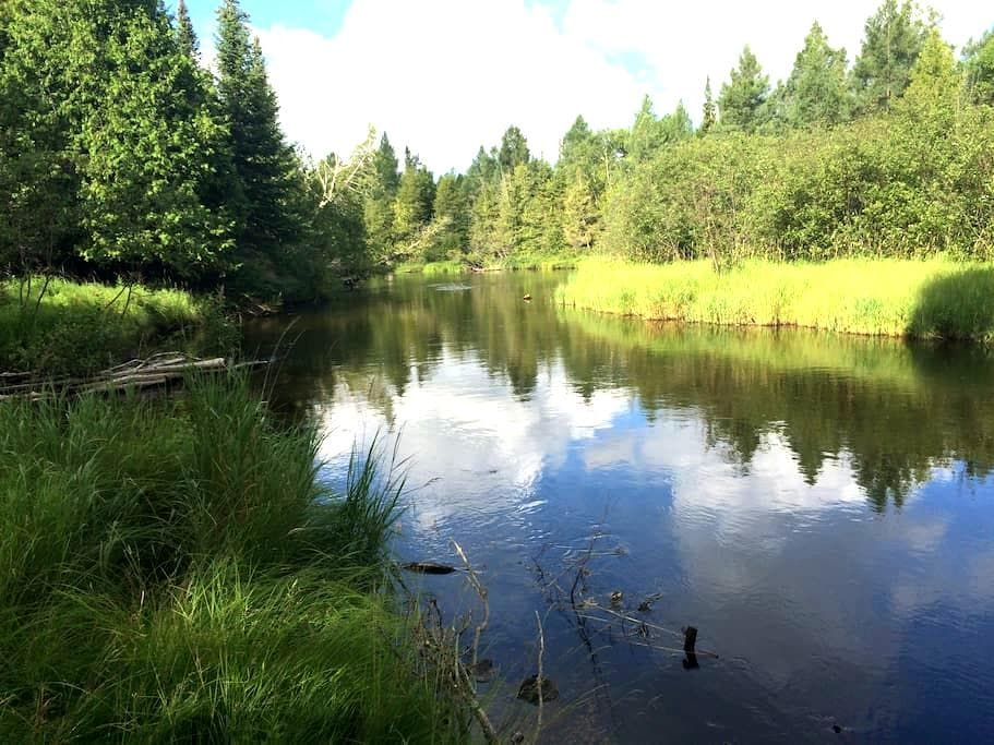 Cozy Cabin on the AuSable River - Grayling - Sommerhus/hytte