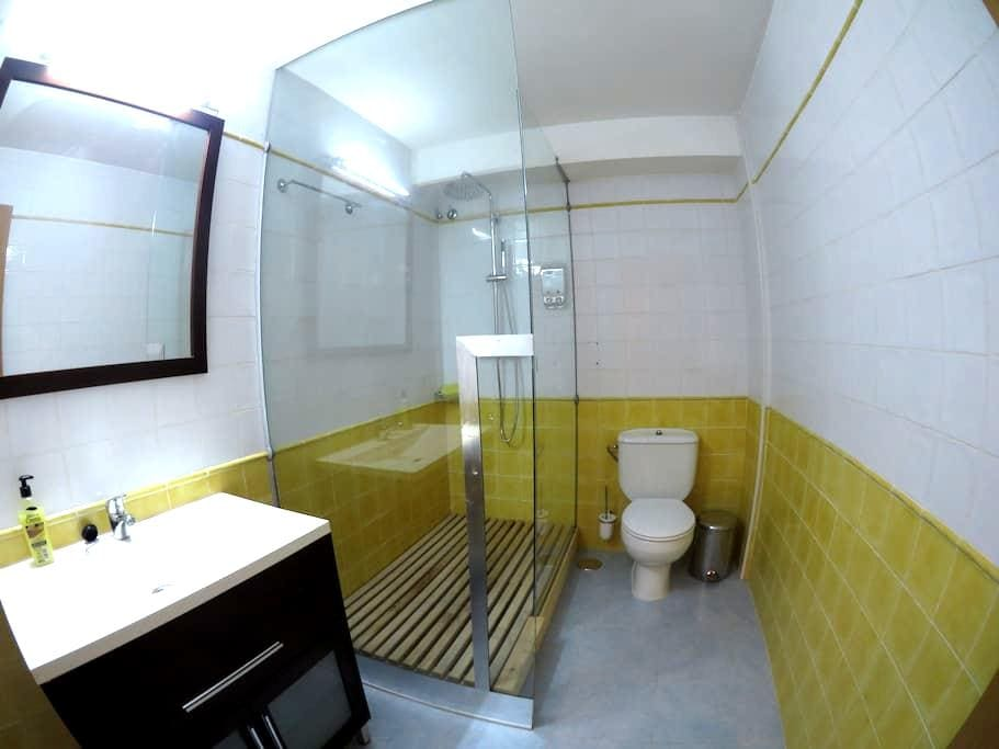 A 3 minutos del Acueducto - Segovia - Apartment
