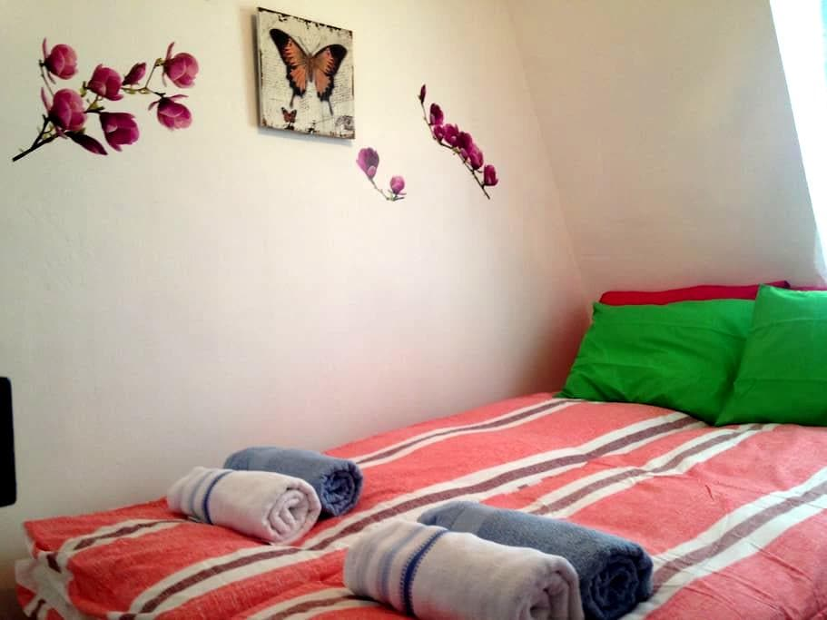 Center,view,universities,soho,Wifi - Santander - Apartamento