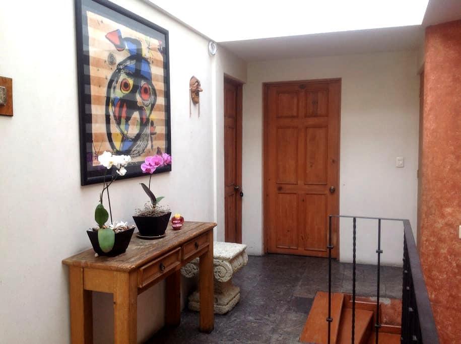 Entire apartment bathroom kitchen. - Ciudad de México