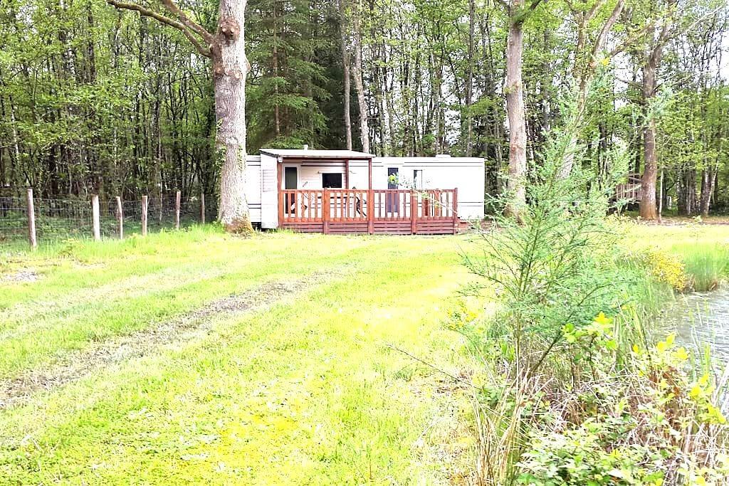 Mobil-Home proche Châteaux,Center parc,ffe,Beauval - Neung-sur-Beuvron - Domek parterowy