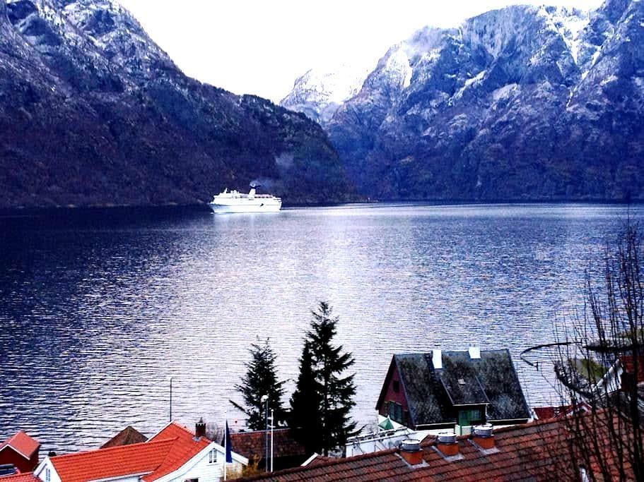 Spectacular Fjord Apartments - Aurland - Appartement